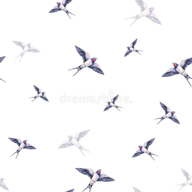 Mooi slik op een witte achtergrond De illustratie van de waterverf De de lentevogel brengt liefde Handwork Naadloos patroon vector illustratie