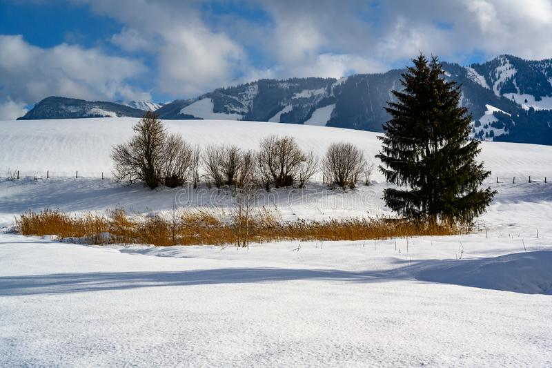 Mooi sneeuw de winterlandschap in Zuid-Duitsland royalty-vrije stock foto
