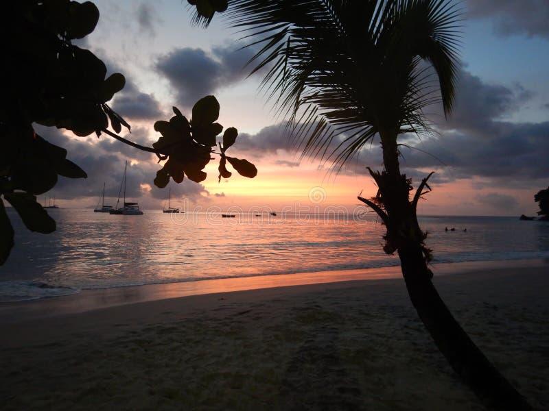 Mooi strand Beau Vallon in de Seychellen stock fotografie