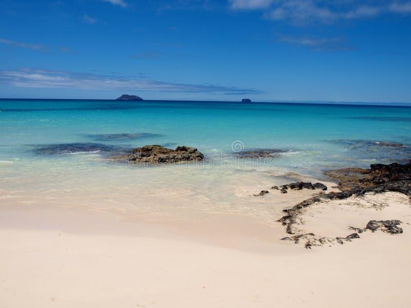 Mooi strand bij de eilanden van de Galapagos stock foto's