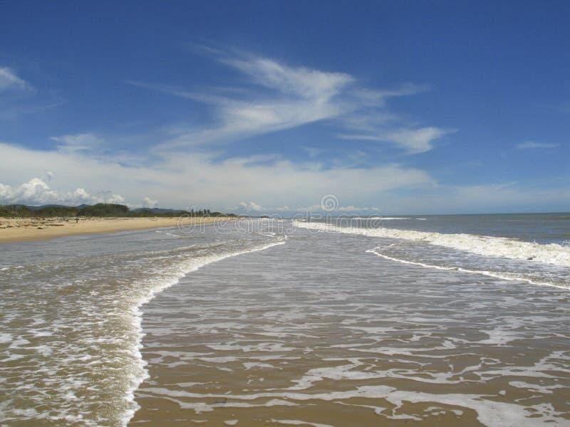 Mooi strand in het Caraïbische overzees in moerasland van Unare-de plaats van Laguneramsar en estuarine ecosysteem in Anzoategui  royalty-vrije stock fotografie