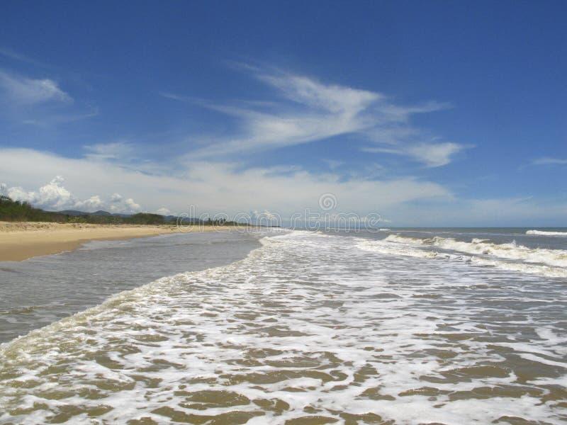 Mooi strand in het Caraïbische overzees in moerasland van Unare-de plaats van Laguneramsar en estuarine ecosysteem in Anzoategui  royalty-vrije stock foto's