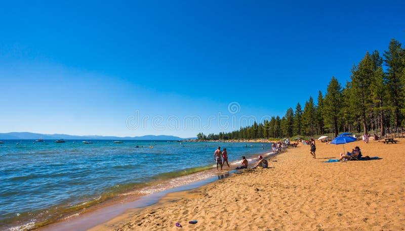 Mooi strand in Meer Tahoe, Californië stock afbeeldingen