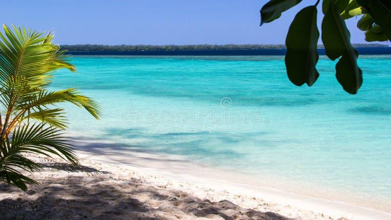 Mooi strand met oorspronkelijk turkoois water in Conflicteiland, Papoea-Nieuw-Guinea stock foto's