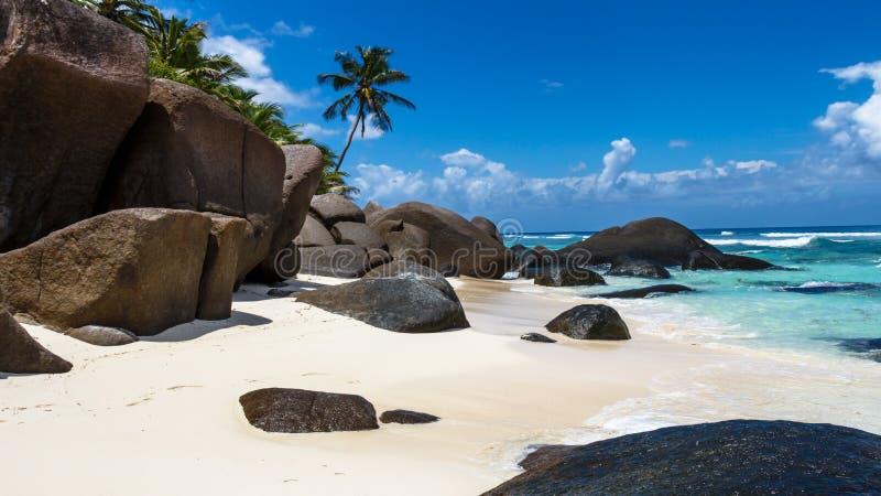 Mooi strand met palmen royalty-vrije stock afbeelding