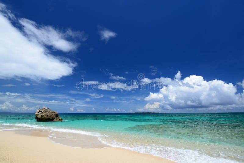 Mooi strand in Okinawa stock afbeeldingen