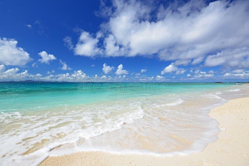 Mooi strand in Okinawa stock fotografie