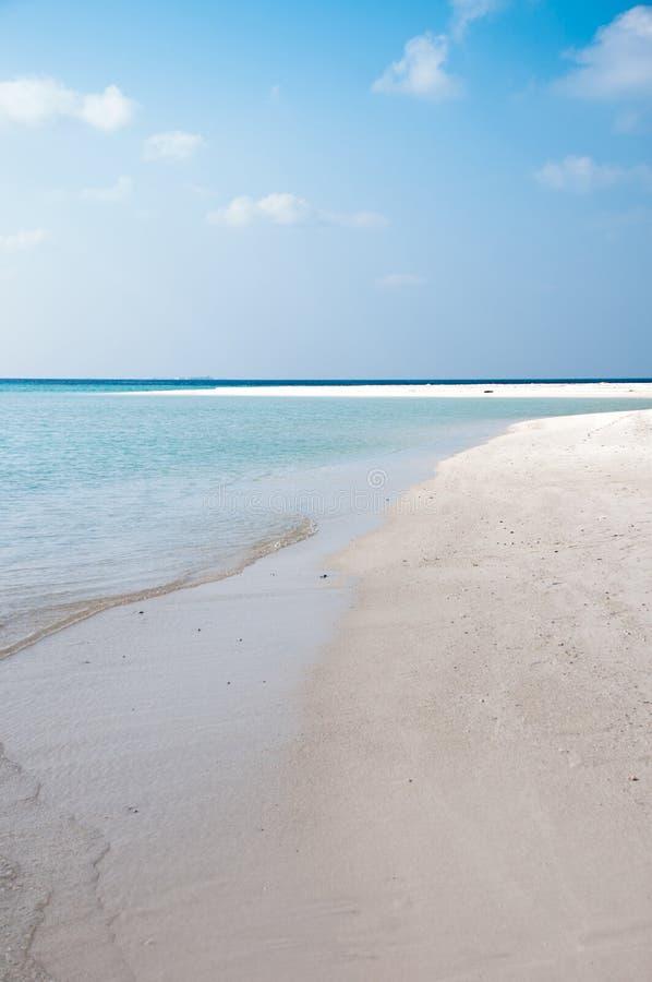 Mooi strand van eiland op de Maldiven royalty-vrije stock fotografie