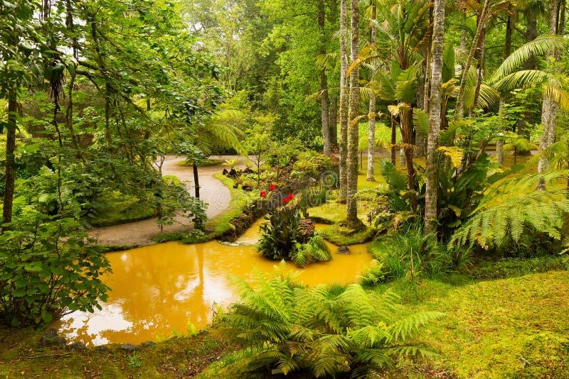 Mooi Terra Nostra-park met van de waterstromen en flora diversiteit stock afbeeldingen
