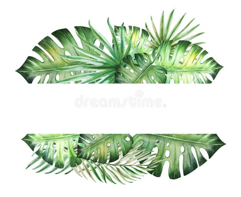 Mooi tropisch bladerenkader voor tekst Monstera, palm Het Schilderen van de waterverf stock illustratie