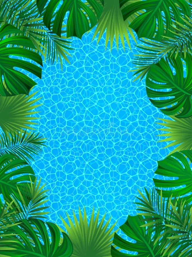 Mooi tropisch kader De zomerontwerp Vector illustratie de exotische achtergrond van wildernisinstallaties achtergrond in in stock illustratie
