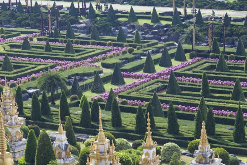 Mooi tropisch park royalty-vrije stock afbeeldingen