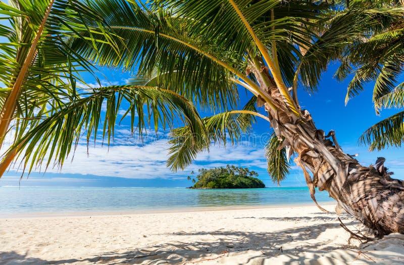 Mooi tropisch strand bij exotisch eiland in de Stille Oceaan stock afbeelding
