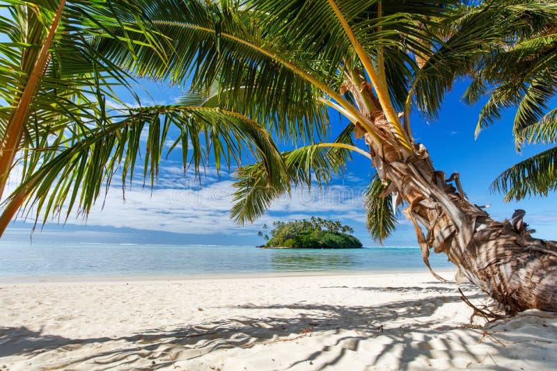 Mooi tropisch strand bij exotisch eiland in de Stille Oceaan stock fotografie