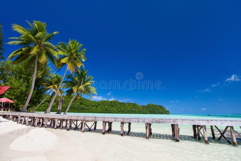 Mooi tropisch strand bij exotisch eiland in de Stille Oceaan royalty-vrije stock afbeelding