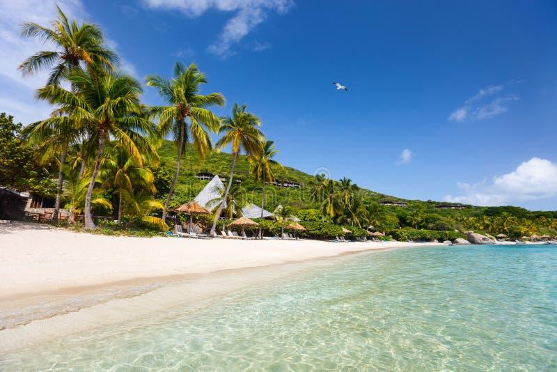 Mooi tropisch strand in de Caraïben stock foto's