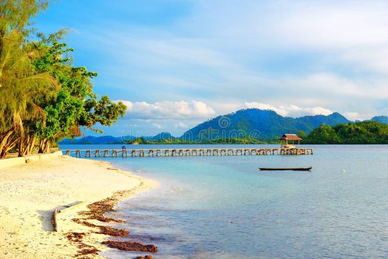 Mooi tropisch strand en houten dok stock foto