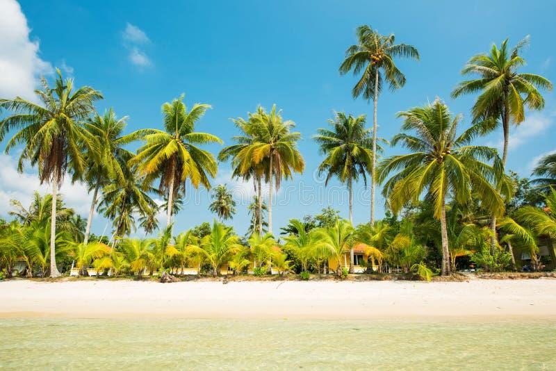 Mooi tropisch strand met blauwe hemel bij Koh Kood-eiland stock afbeelding