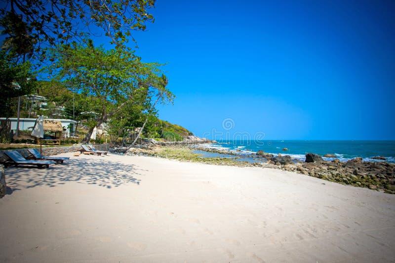 Mooi tropisch strand met bomen en sunbeds royalty-vrije stock foto's
