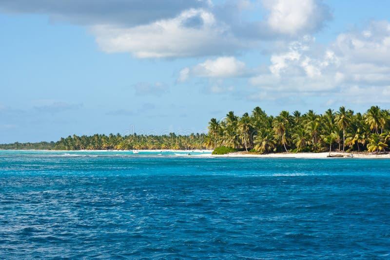 Mooi tropisch strand met palmen stock foto's