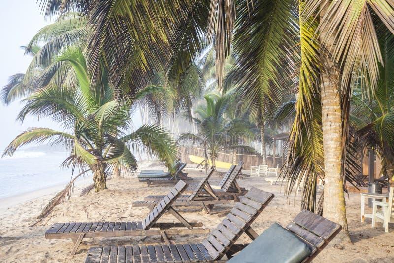 Mooi tropisch strand met palmen royalty-vrije stock afbeeldingen