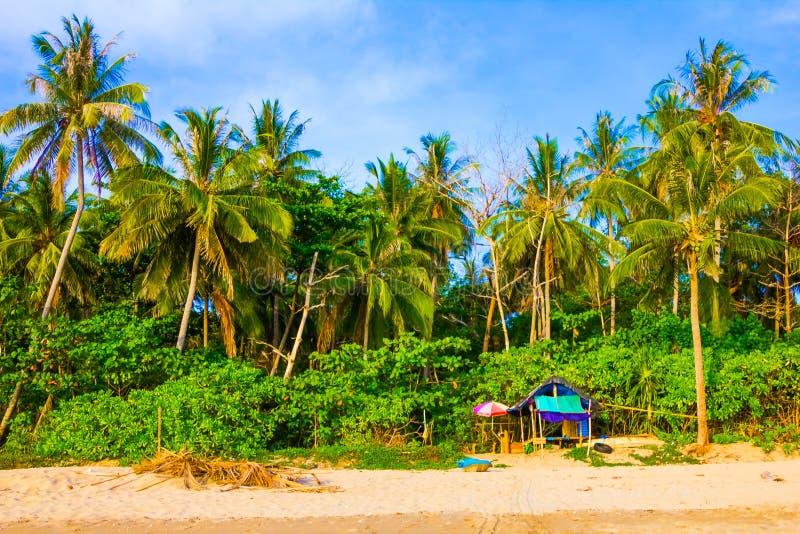 Mooi tropisch strand met palmen in Koh Lanta Island, Thailand stock foto