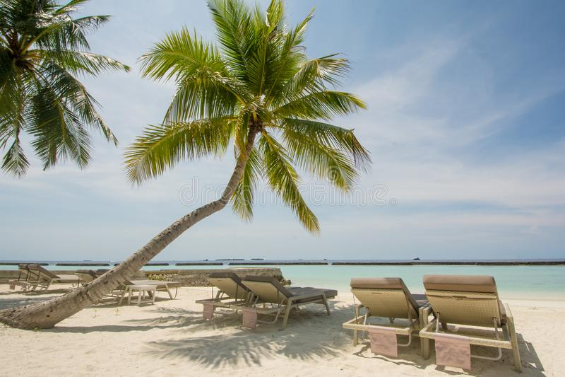 Mooi tropisch strandlandschap met oceaan en palmen, sunbeds bij het tropische eiland stock afbeelding