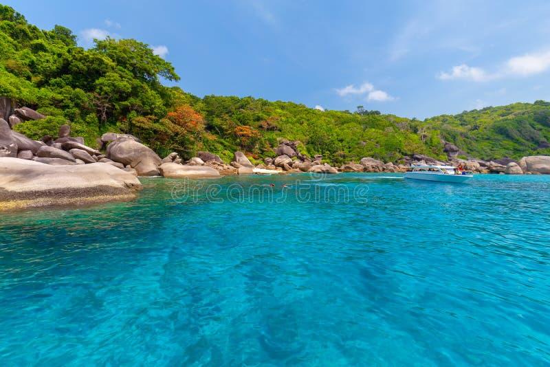 Mooi tropisch zandig strand en weelderig groen gebladerte op een tropisch eiland, Similan-Eilanden thailand royalty-vrije stock fotografie