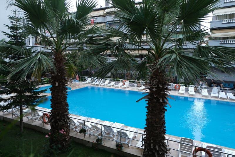 Mooi tropisch zwembad in hotel stock foto's