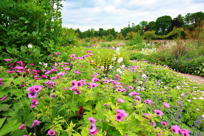 Mooi tuinhoogtepunt van bloemen royalty-vrije stock foto