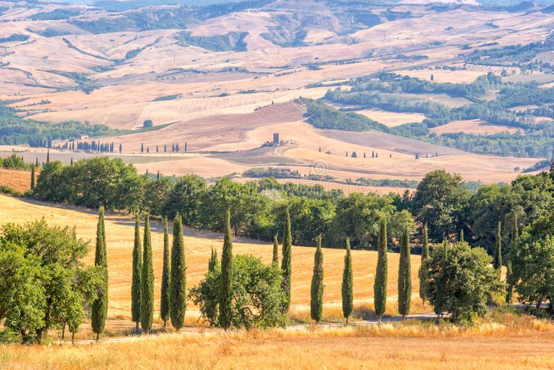 Mooi typisch landschap van Toscanië met cipresbomen, Toscanië Italië stock foto's