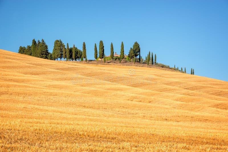 Mooi typisch landschap van Val D ` Orcia in de kleuren van Toscanië withvivid in de zomer, Val D ` Orcia, Toscanië Italië royalty-vrije stock afbeelding