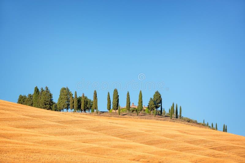 Mooi typisch landschap van Val D ` Orcia in de kleuren van Toscani? withvivid in de zomer, Val D ` Orcia, Toscani? Itali? stock afbeeldingen