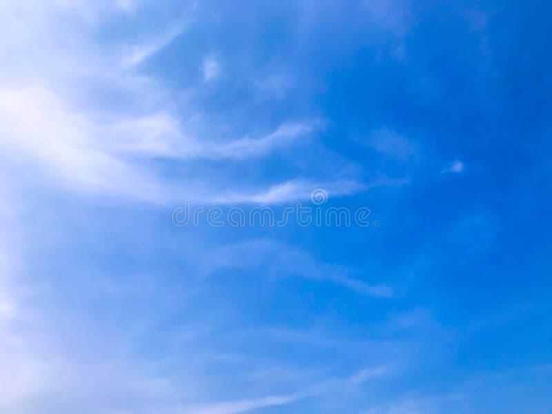 Mooi van blauwe hemel en kon stock fotografie