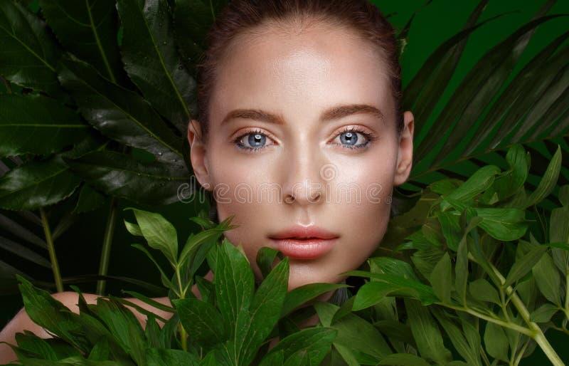 Mooi vers meisje met perfecte huid, natuurlijke samenstelling en groene bladeren Het Gezicht van de schoonheid stock foto