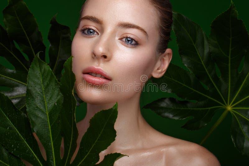 Mooi vers meisje met perfecte huid, natuurlijke samenstelling en groene bladeren Het Gezicht van de schoonheid stock fotografie