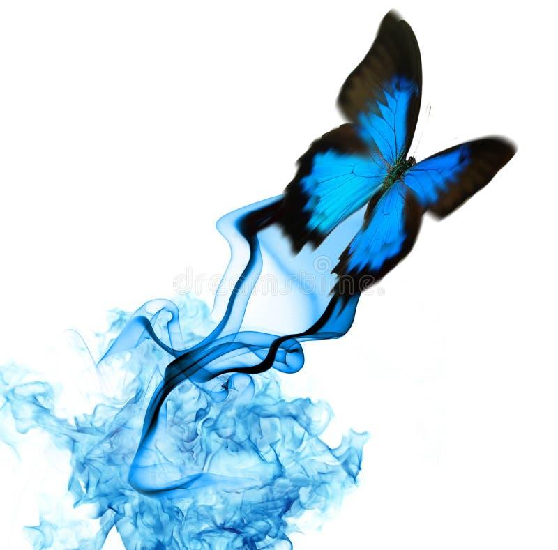 Mooi vlinderontwerp stock afbeeldingen