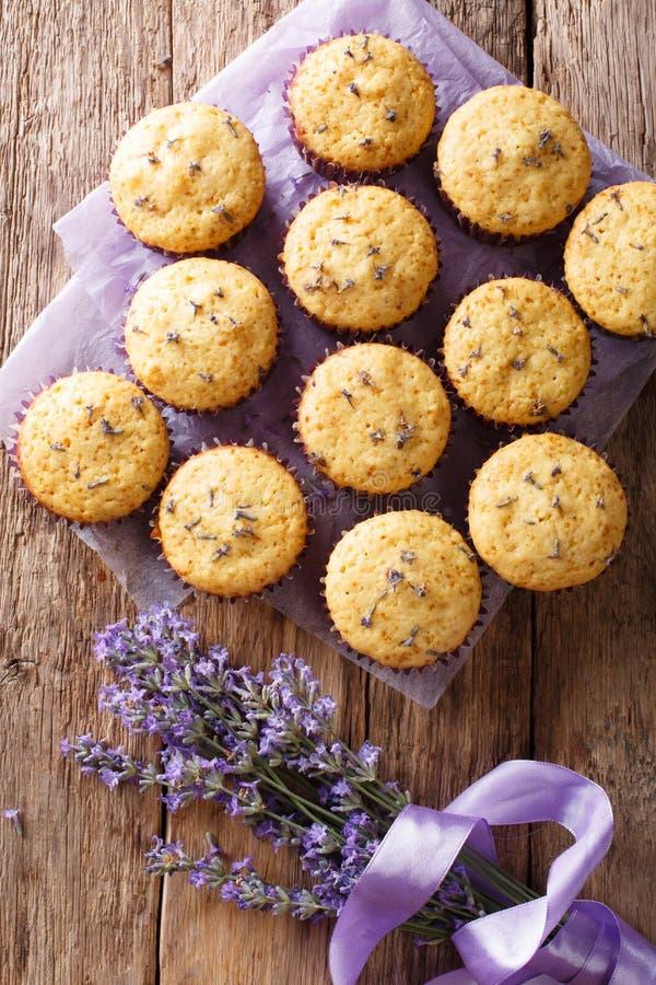 Mooi voedseldessert: de muffins met lavendel bloeit close-up royalty-vrije stock foto's