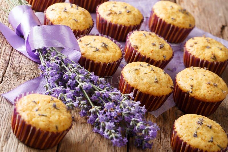Mooi voedseldessert: de muffins met lavendel bloeit close-up stock afbeeldingen