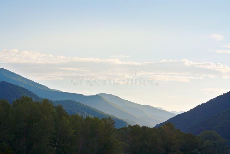 Mooi vroeg die ochtendzonlicht in bergen met bossen worden behandeld stock afbeeldingen