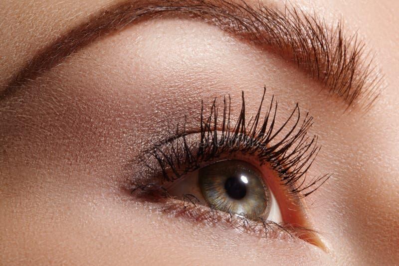 Mooi vrouwelijk oog met extreme lange wimpers, zwarte voeringsmake-up De perfecte samenstelling, snakt zwepen De ogen van de clos royalty-vrije stock foto's