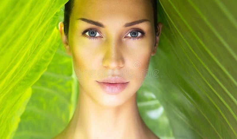 Mooi Vrouwengezicht met Natuurlijke naakte samenstelling op een tropisch weiland stock afbeelding