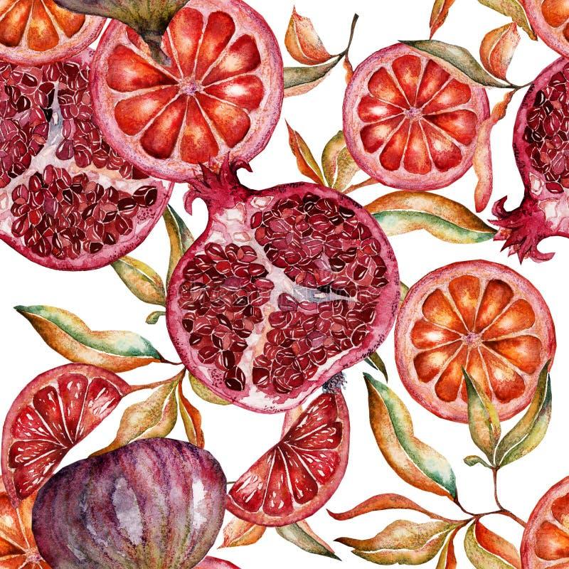 Mooi waterverf naadloos patroon met vruchten en bloemen van granaatappel vector illustratie