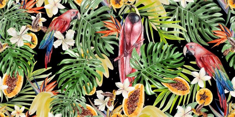 Mooi waterverf tropisch patroon met papegaaien en bloemen van hibiscus en strelitzia Tropische vruchten papaja en bananen stock illustratie