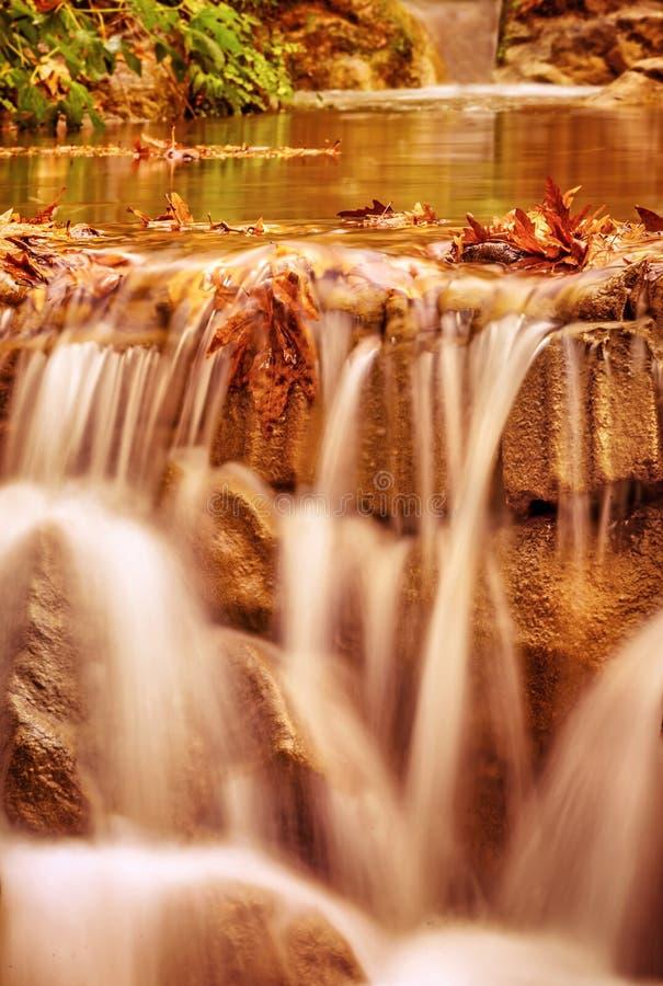 Mooi weinig waterval in het bos stock afbeelding