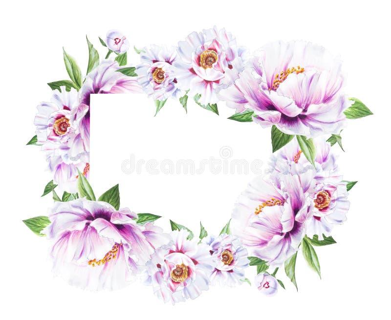 Mooi wit pioenkader Boeket van bloemen Bloemendruk Tellerstekening royalty-vrije illustratie