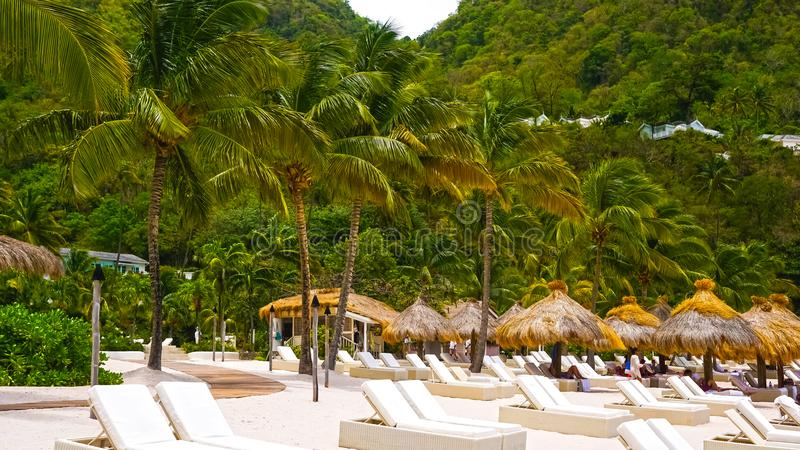 Mooi wit strand in Heilige Lucia, Caraïbische Eilanden royalty-vrije stock foto
