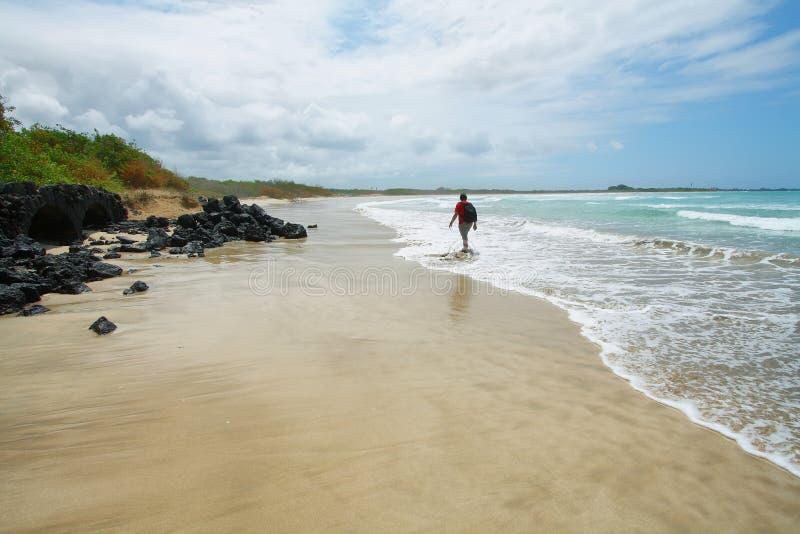 Mooi wit zandstrand in de Eilanden van de Galapagos, Ecuador royalty-vrije stock foto