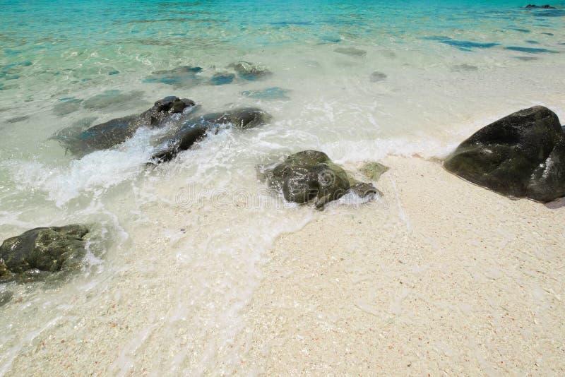Mooi wit zandstrand met zachte oceaangolf en rotsen kortom stock afbeelding