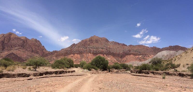 Mooi woestijnlandschap in quebradapalmira zuidelijk Bolivië stock afbeelding